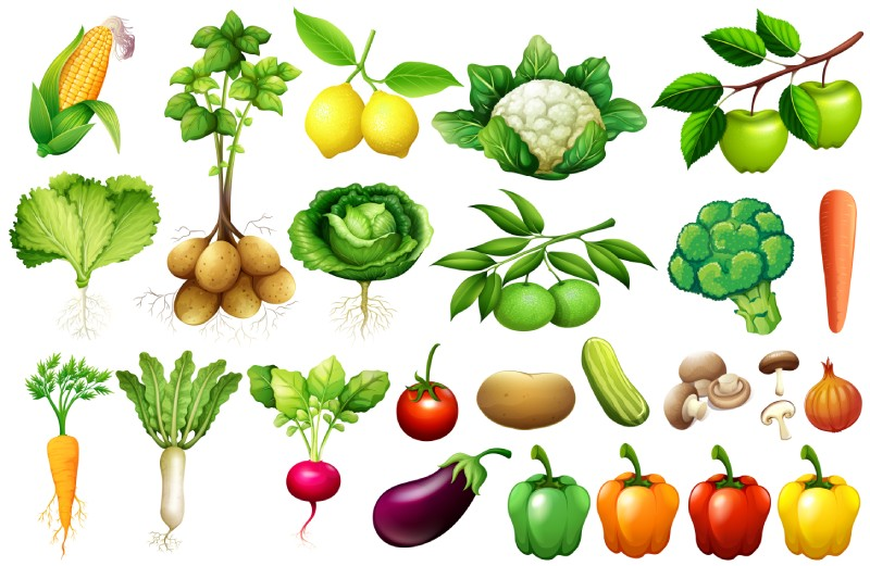 vegitables - 16 Best Ways to Maintain Weight Loss