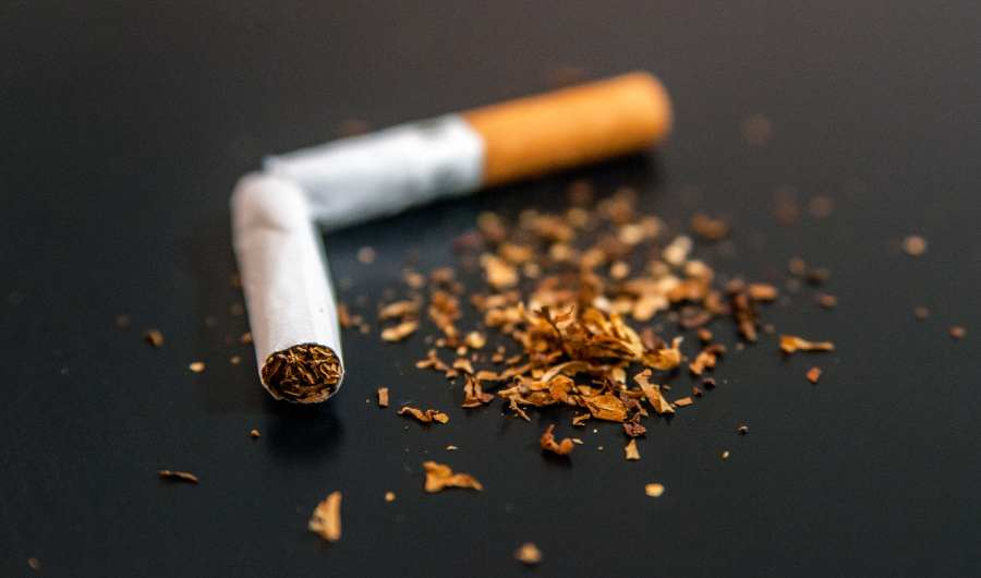 Nicotine - Most 5 Foods That Are Killing Your Intelligence, Focus and Brain